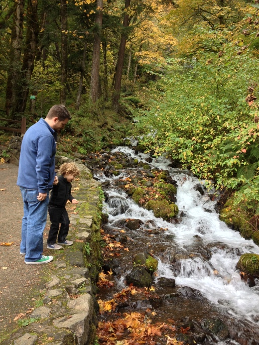 Adventuring the falls with our child was thrilling and such a great memory.